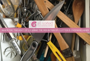 When the Thought of Clearing the Mountain of Clutter is Overwhelming!